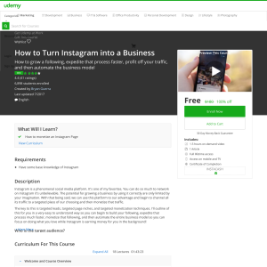Free How to Turn Instagram into a Business